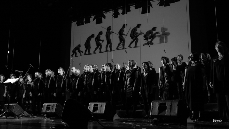 20141108_concert-vcvl_ber_8757-1