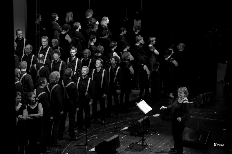 20141108_concert-vcvl_ber_2897