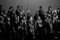 20141108_concert-vcvl_ber_2349-1